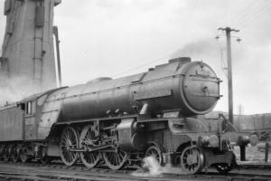 team locomotive at the RDRPS railway