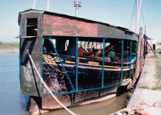 Mirosa restoration